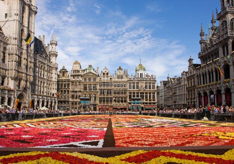 Tapis de fleur à Bruxelles images libres de droits