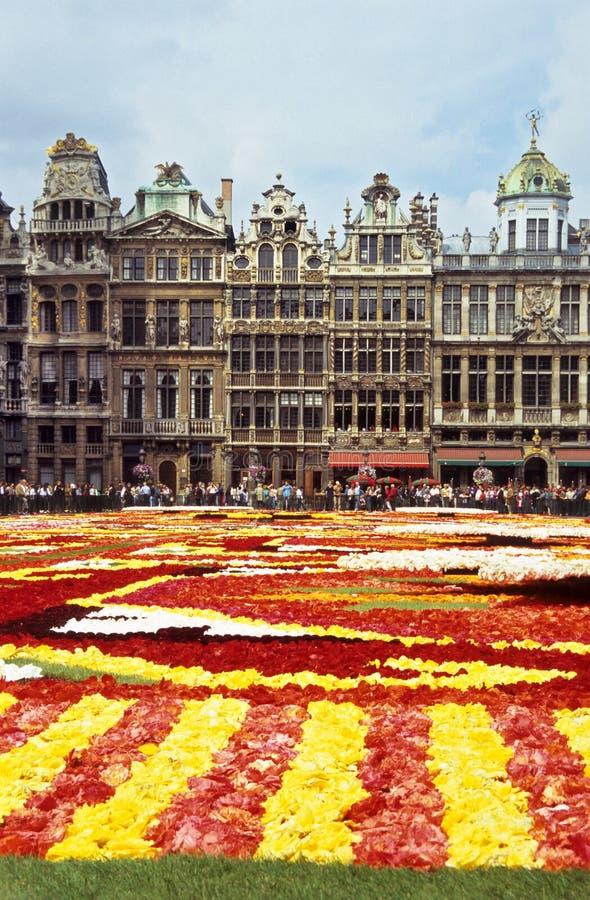 Tapis de fleur de Bruxelles photo libre de droits