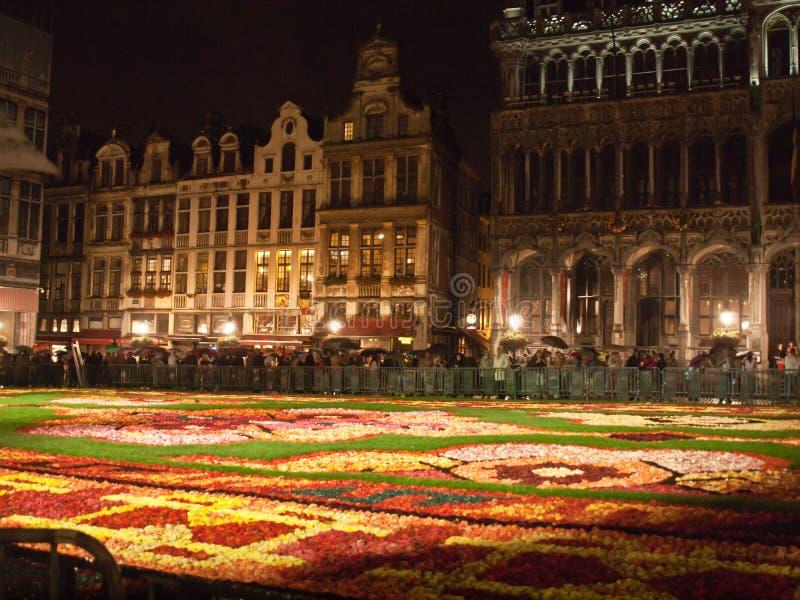 Tapis 2014 de fleur de Bruxelles photographie stock libre de droits