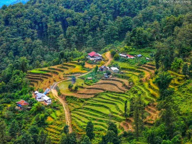 Taplejung Nepal imagem de stock royalty free