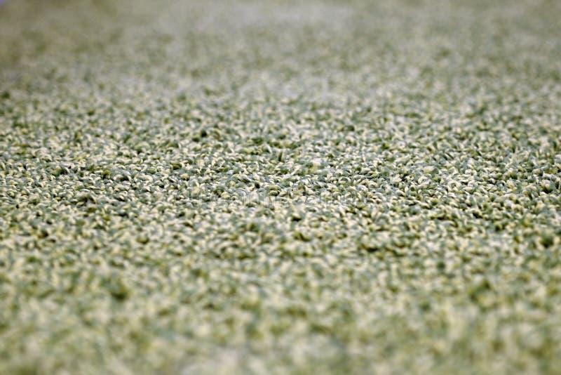 Tappeti da bagno che grigi della pila i tappeti da bagno impilano, impilato sopra a vicenda fotografie stock