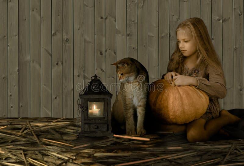Tappning barn retro stil Nätt blond flicka med en stor pumpa och ett brittiskt kattsammanträde på sugrör och blick på arkivfoton