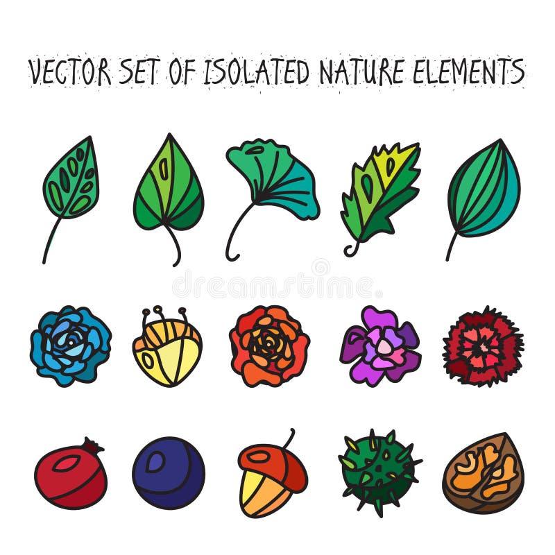 Tappning blommar, bär frukt och lämnar symbolssamlingen stock illustrationer
