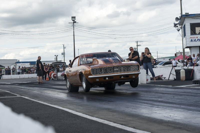 Tappning Chevrolet Camaro som gör en wheelie royaltyfri fotografi