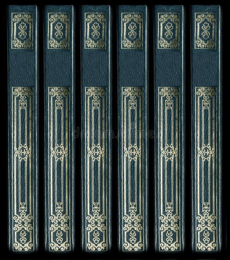 tappning för ryggar för bokläder gammal royaltyfri foto