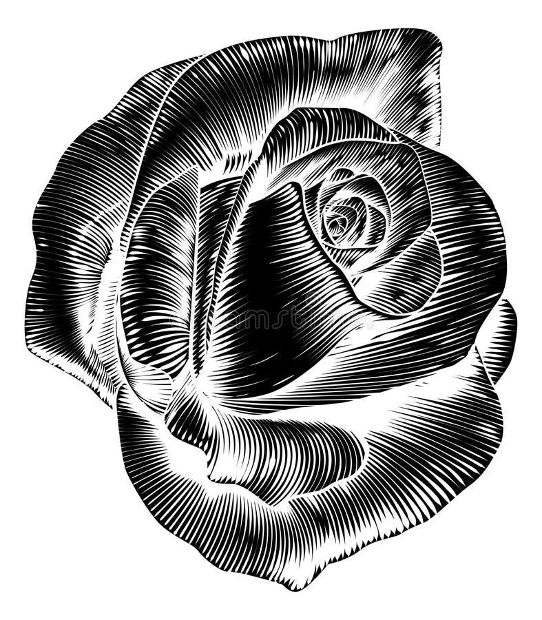 Tappning Rose Flower Etching Engraved Woodcut royaltyfri illustrationer