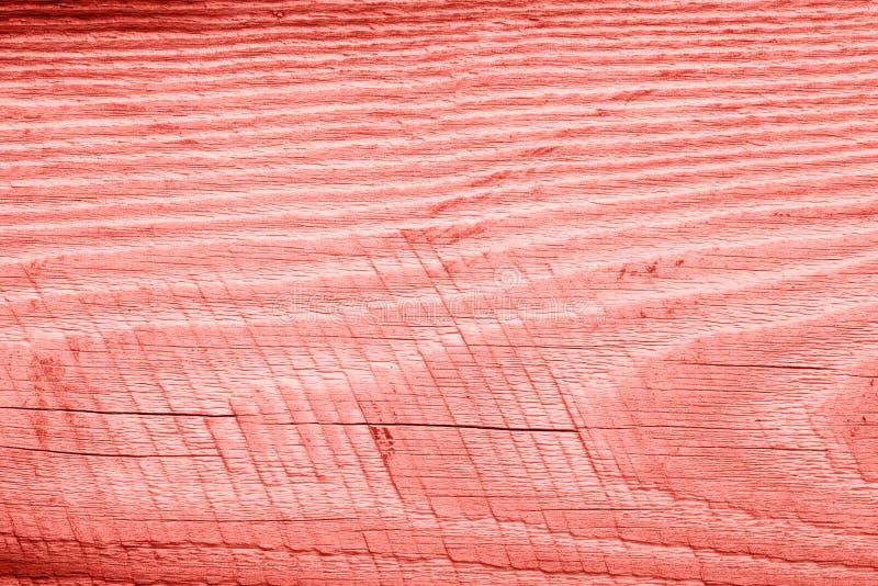 Tappning som bor korallträtextur abstrakt bakgrund royaltyfri foto