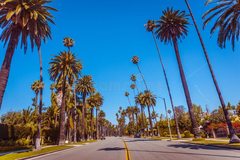 Tappning tonat berömt gömma i handflatan av Beverly Hills längs gatan i Los Angeles royaltyfri bild