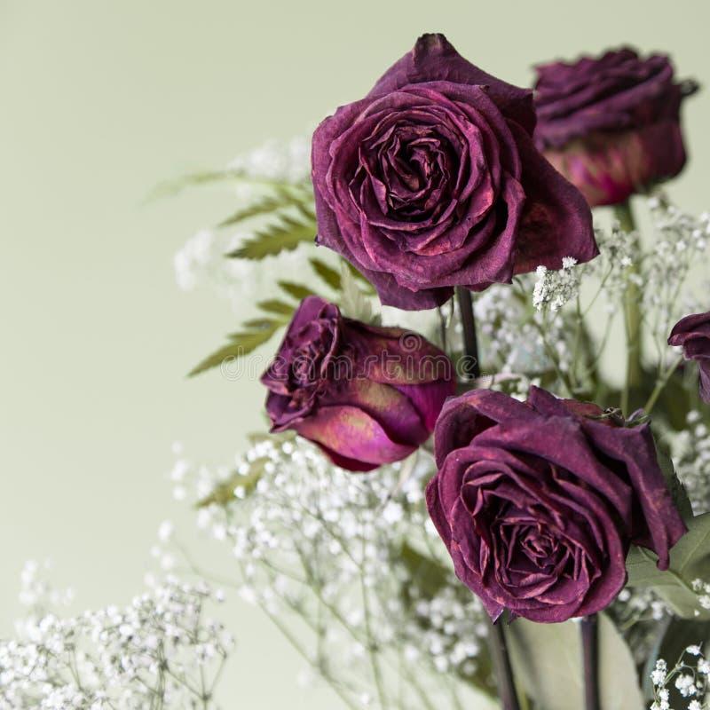 Tappning torkade Rose Bouquet arkivbild