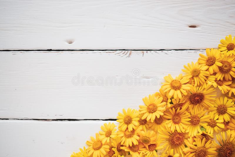 Tappningbakgrund för vitt bräde med gula blommor royaltyfria foton