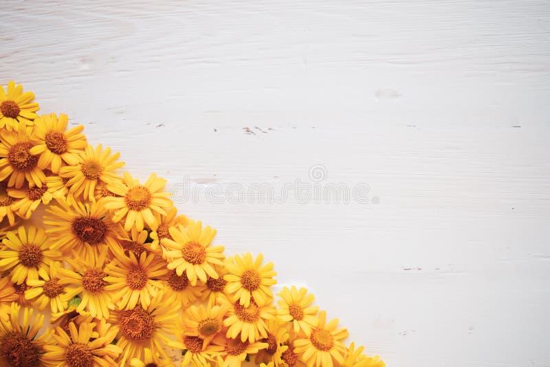 Tappningbakgrund för vitt bräde med gula blommor royaltyfri bild