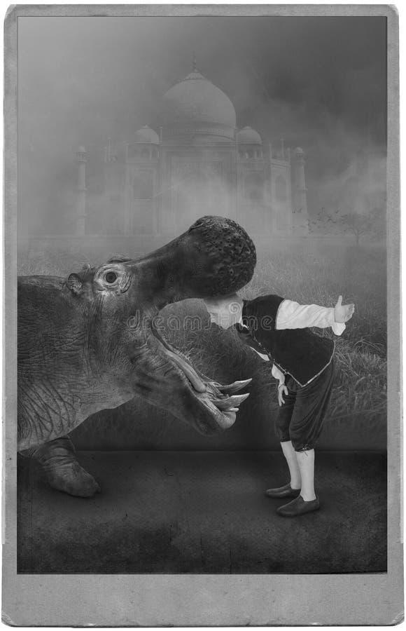 Tappningcirkusartist, karneval, flodhäst, flodhäst arkivbilder