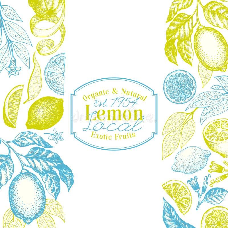Tappningcitrusbakgrund Mall för design för citronträd Hand dragen vektorfruktillustration Inristad stilmenyräkning royaltyfri illustrationer