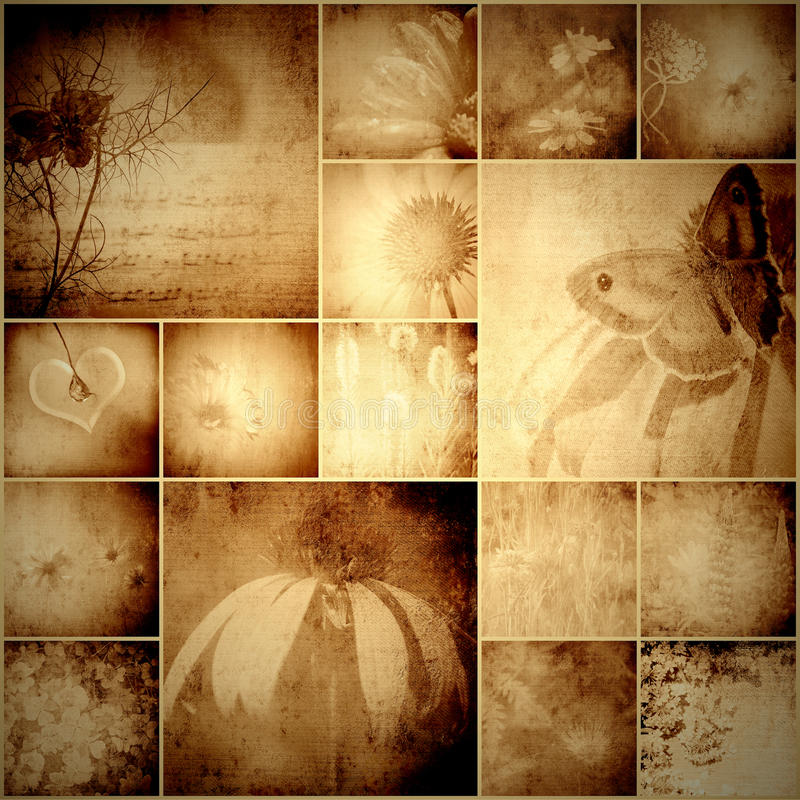 Tappningcollageblommor och fjäril royaltyfri illustrationer