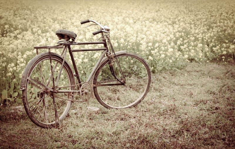 Tappningcykel bredvid ett lantligt senapsgult fält fotografering för bildbyråer