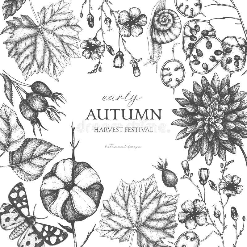 Tappningdesignen med sidor, blommor, sniglar, fjärilar och frö för hand utdragna skissar lätt höstbakgrund redigerar bildnaturen  royaltyfri illustrationer