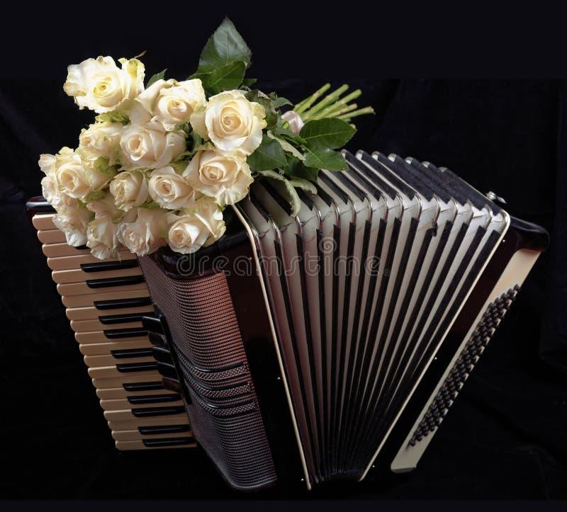 Tappningdragspel och en bukett av vita rosor Begrepp av en nostalgisk musik Stilleben med ett folk musikinstrument arkivfoto