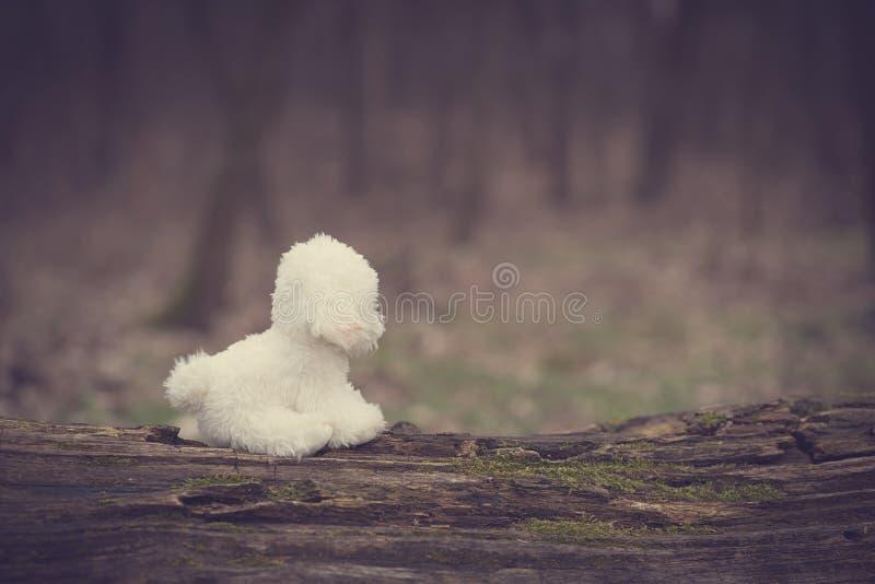 Tappningfoto av en leksakhund fotografering för bildbyråer