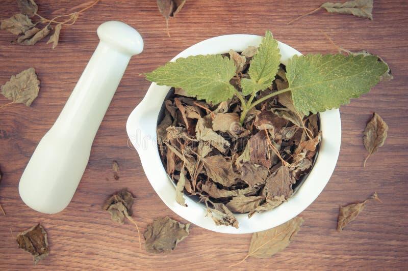 Tappningfoto, ny gräsplan och torkad citronbalsam med mortel, herbalism, alternativ medicin royaltyfria bilder