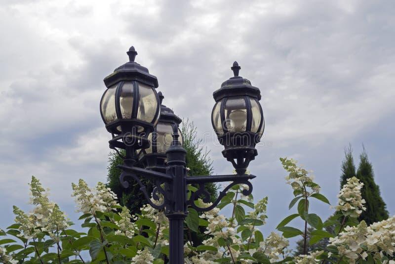 Tappninggatalampa royaltyfri bild