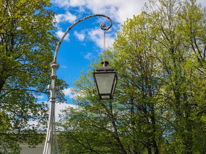 Tappninggatalampa mot en bakgrund av att blomstra trädet och blå himmel arkivfoton