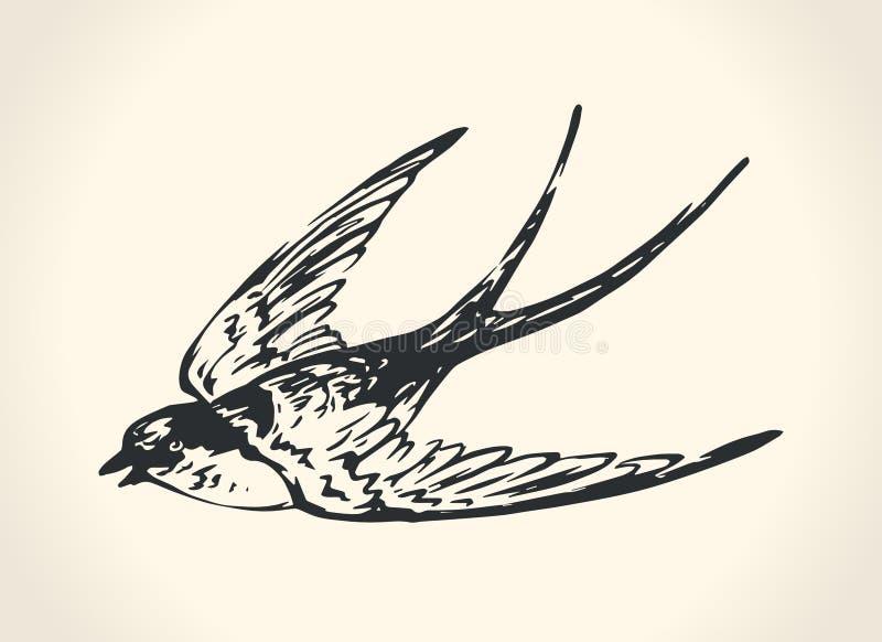 Tappningillustration av svalan vektor illustrationer