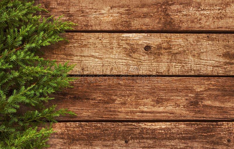 Tappningjulbakgrund - gammalt trä och sörjer filialen royaltyfria bilder