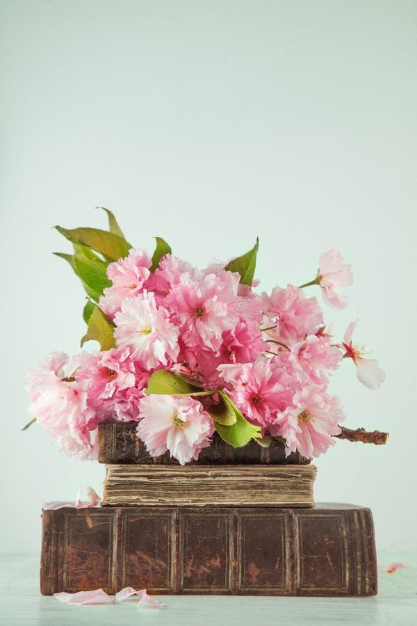 Tappningromanböcker med buketten av den körsbärsröda blomningen blommar på vit wood bakgrund i ljusa pastellfärgade färger royaltyfria bilder