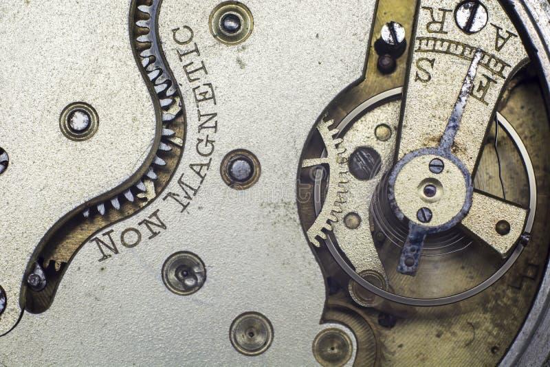Tappningrovakugghjul royaltyfria foton