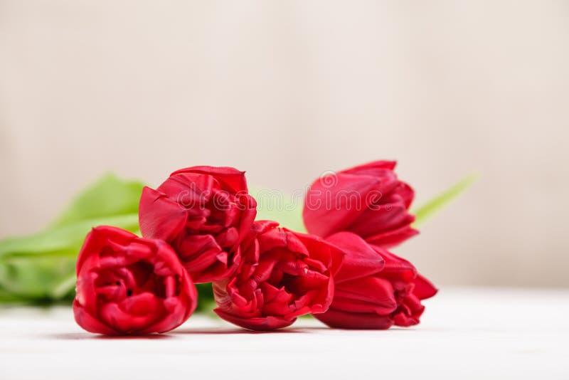 Tappningstilleben med en vårbukett av tulpan Begreppet av moders dag, kvinnors dag Dekorera hemmet med blommor arkivbild