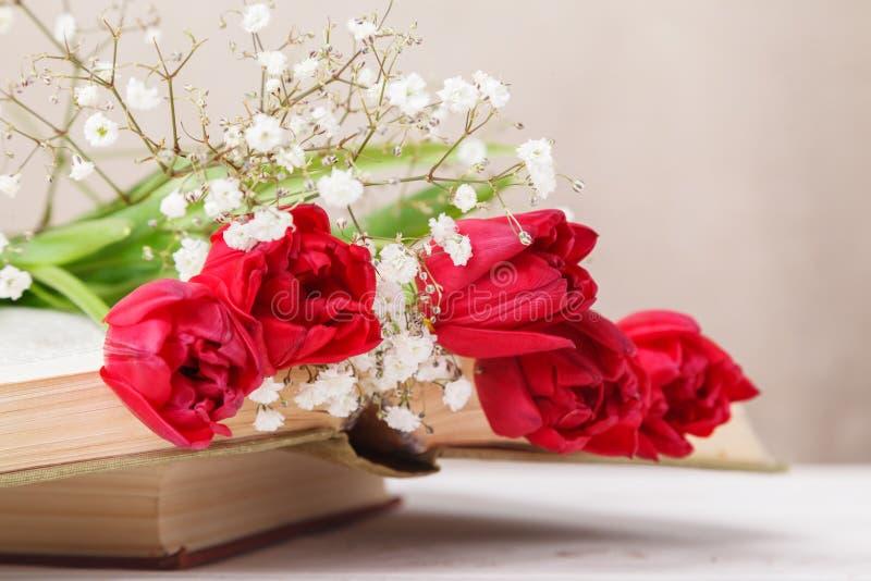 Tappningstilleben med röda tulpan för en vår och böcker på en beige bakgrund Moders dag, kvinnors dagbegrepp royaltyfri foto