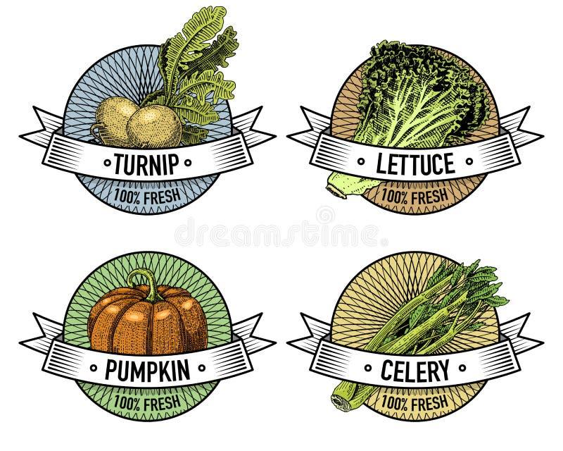 Tappninguppsättningen av etiketter, emblem eller logoen för vegeterian mat, inristade grönsaker räcker utdraget eller Amerikansk  royaltyfri illustrationer