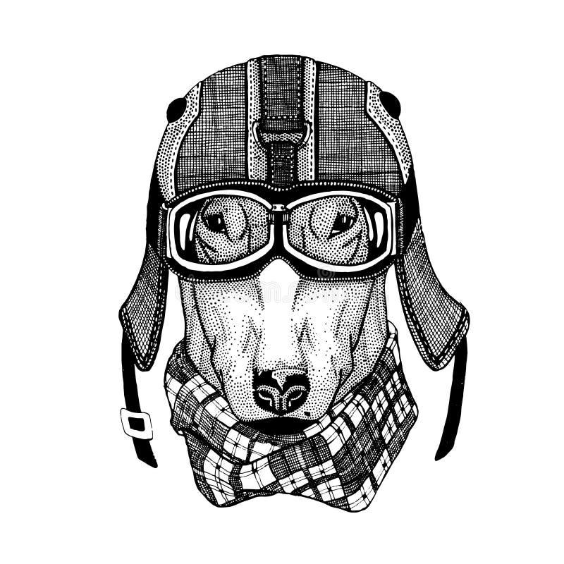 Tappningvektorbilder av hundkapplöpning för t-skjorta planlägger för motorcykeln, cykeln, mopeden, sparkcykelklubban, aero klubba royaltyfri illustrationer