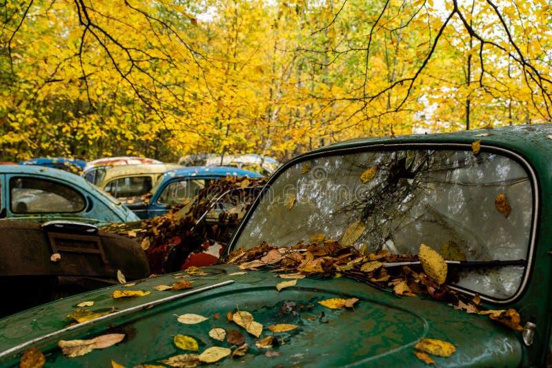 TappningVW-skalbagge - Volkswagen typ I - Pennsylvania skrot royaltyfri fotografi