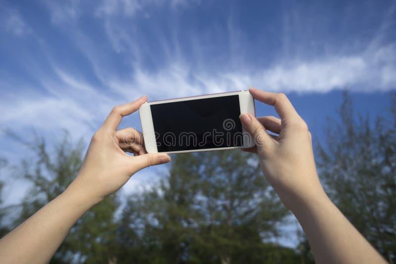 Tar sörjer den smarta telefonen för kvinnabruk ett foto av blå himmel och trädet royaltyfria foton
