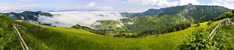 Tara Mountain stock afbeelding