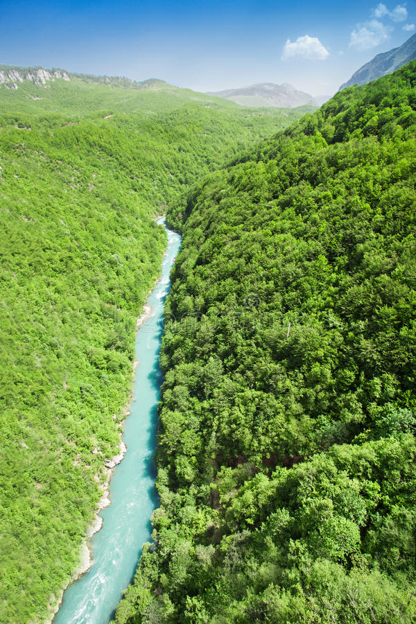 Tara River royalty-vrije stock foto's