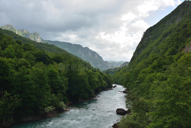 Tara River royalty-vrije stock afbeeldingen