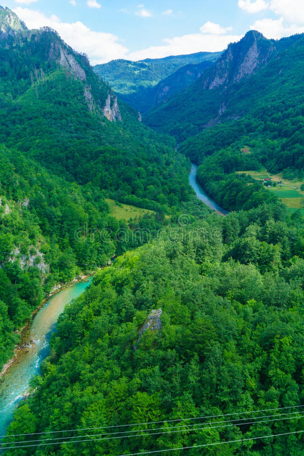 Tara River en Canion royalty-vrije stock foto's