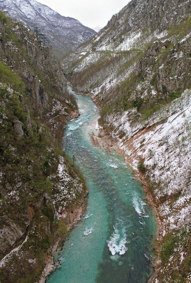 Tara rivier royalty-vrije stock fotografie