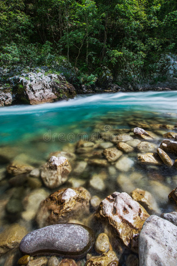 Tara riviercanion stock fotografie