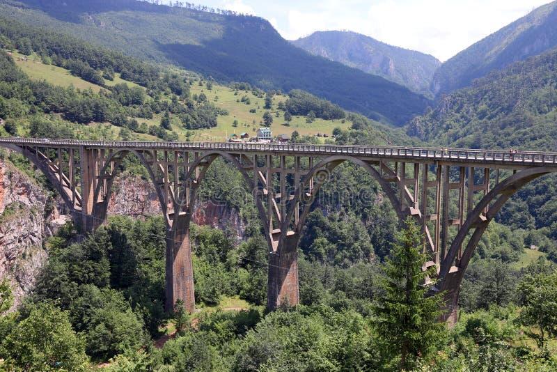Tara van de Djurdjevicbrug riviercanion royalty-vrije stock afbeeldingen