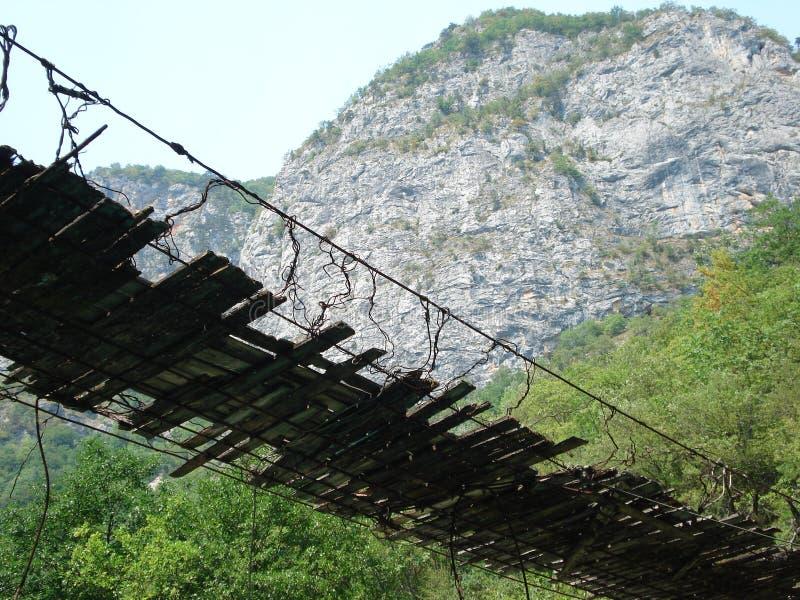 Tara van Raftingsdrina hangende brug stock afbeelding