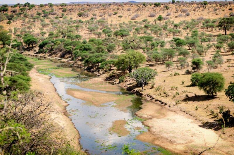 Tarangire parka narodowego krajobraz obrazy stock