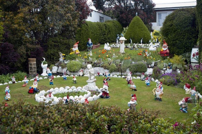 Tarasowaty ogrodowy pełny ogrodowi gnomy, Stanley Falkland wyspy obraz royalty free