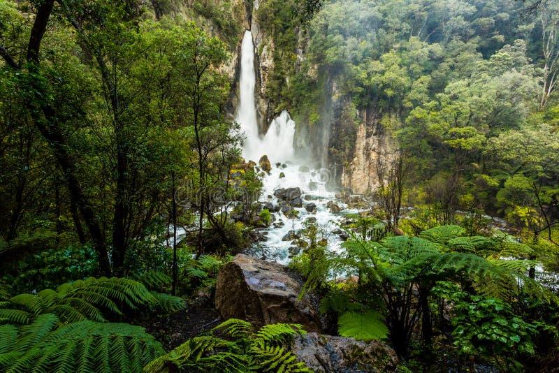 Tarawera tombe - Rotorua - Whitewater images libres de droits