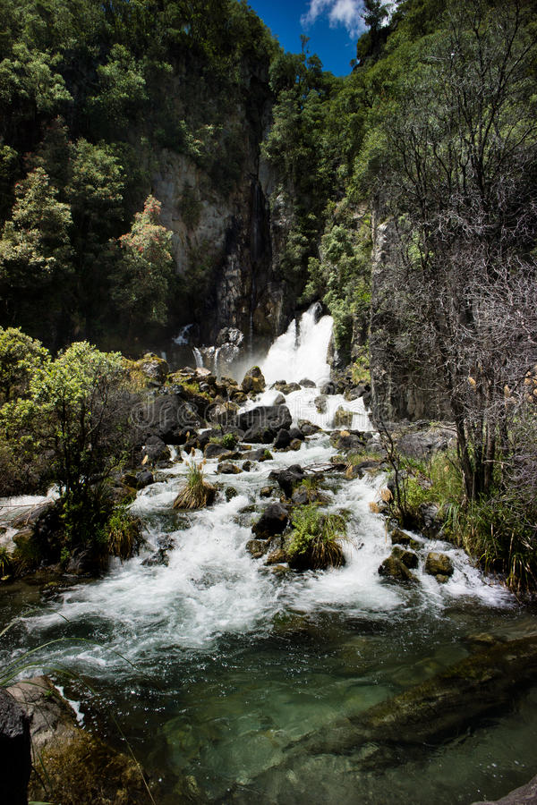 Taraweradalingen, Nieuw Zeeland stock fotografie