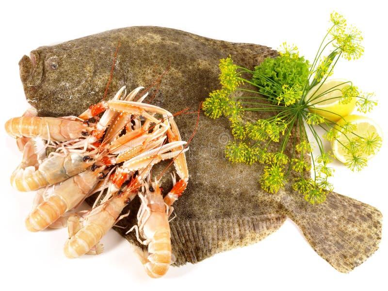 Tarbotvissen - Platvissen royalty-vrije stock afbeeldingen