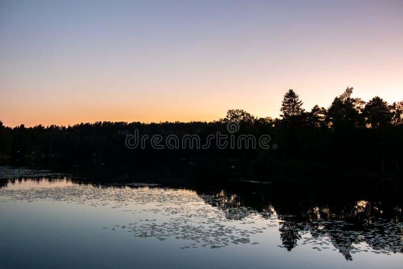Tardío puesta del sol hermosa de la noche del verano con reflexiones tranquilas del agua y árboles oscuros contra el cielo claro fotografía de archivo