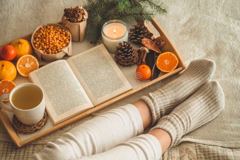 Tarde acogedora del invierno, calcetines de lana calientes La mujer es pies de mentira para arriba en la manta y el libro de lect fotos de archivo libres de regalías